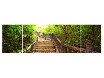 Tablou cu trepte ducând prin peisaj (K011329K17050)