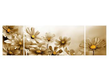 Obraz květů (K011484K17050)