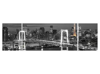 Obraz mostu (K011529K17050)