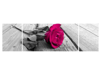 Obraz růže (K011856K17050)