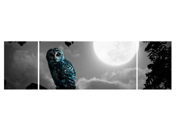 Tablou cu bufnița nocturnă (K012185K17050)