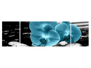 Tablou cu flori de orhidee albastre (K012398K17050)