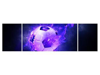 Tablou cu mingea de footbal în plasă (K014164K17050)