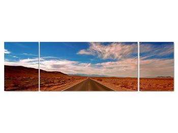 Obraz dlhej cesty (V020076V17050)