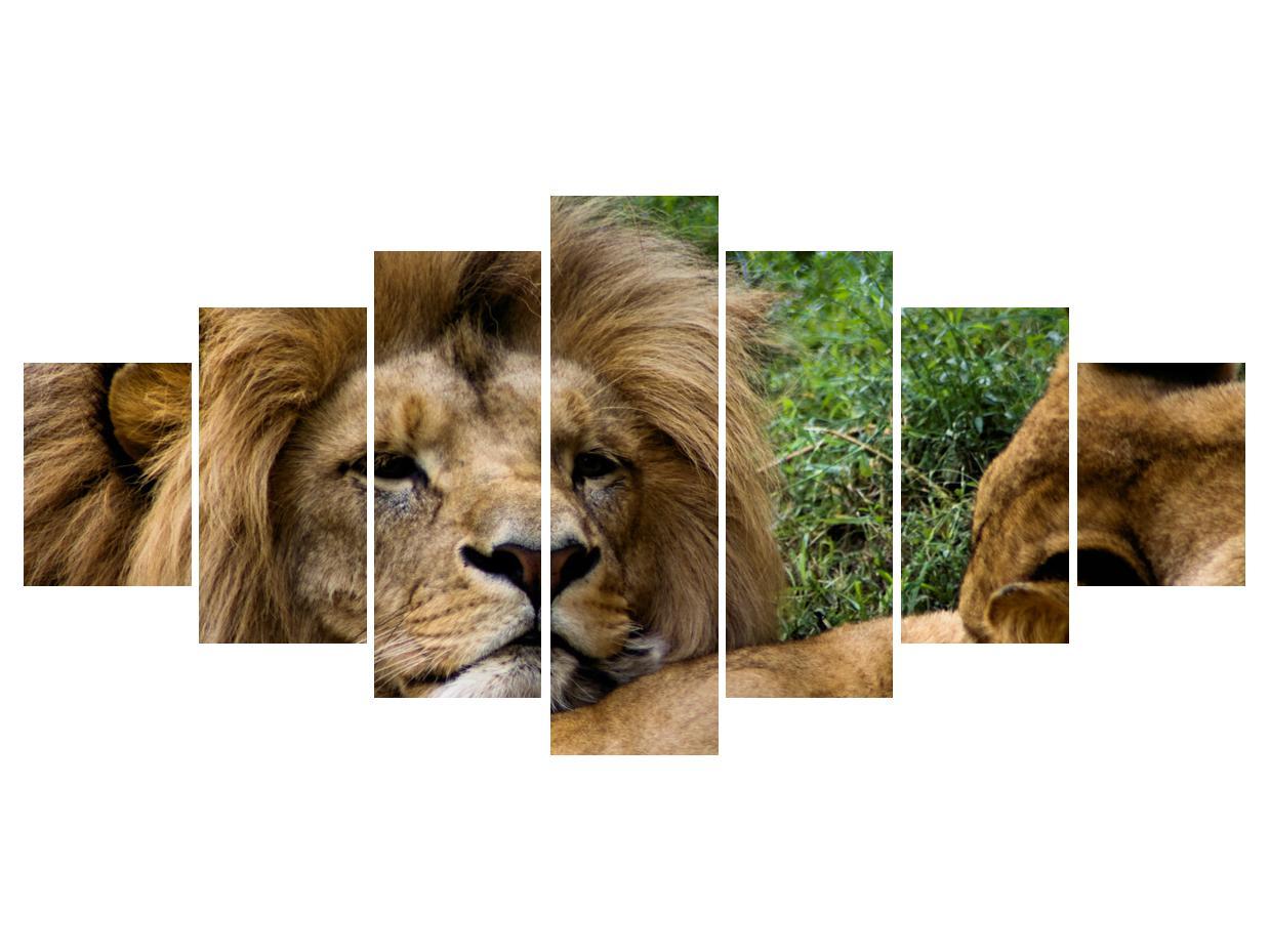 Moderna slika K010143K210100 (K010143K210100)