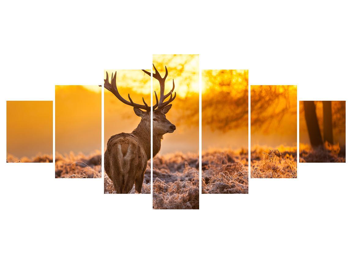 Slika jelena (K011281K210100)