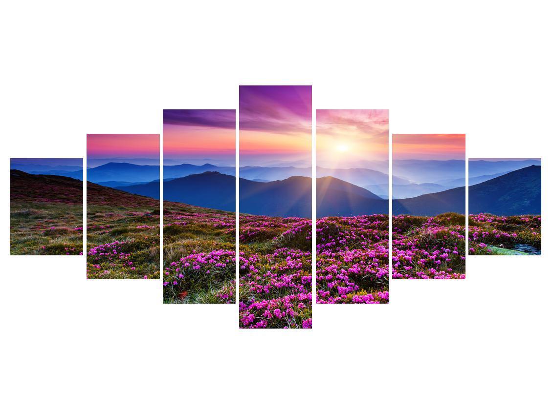 Slika planinskog rascvijetalog krajolika (K011322K210100)