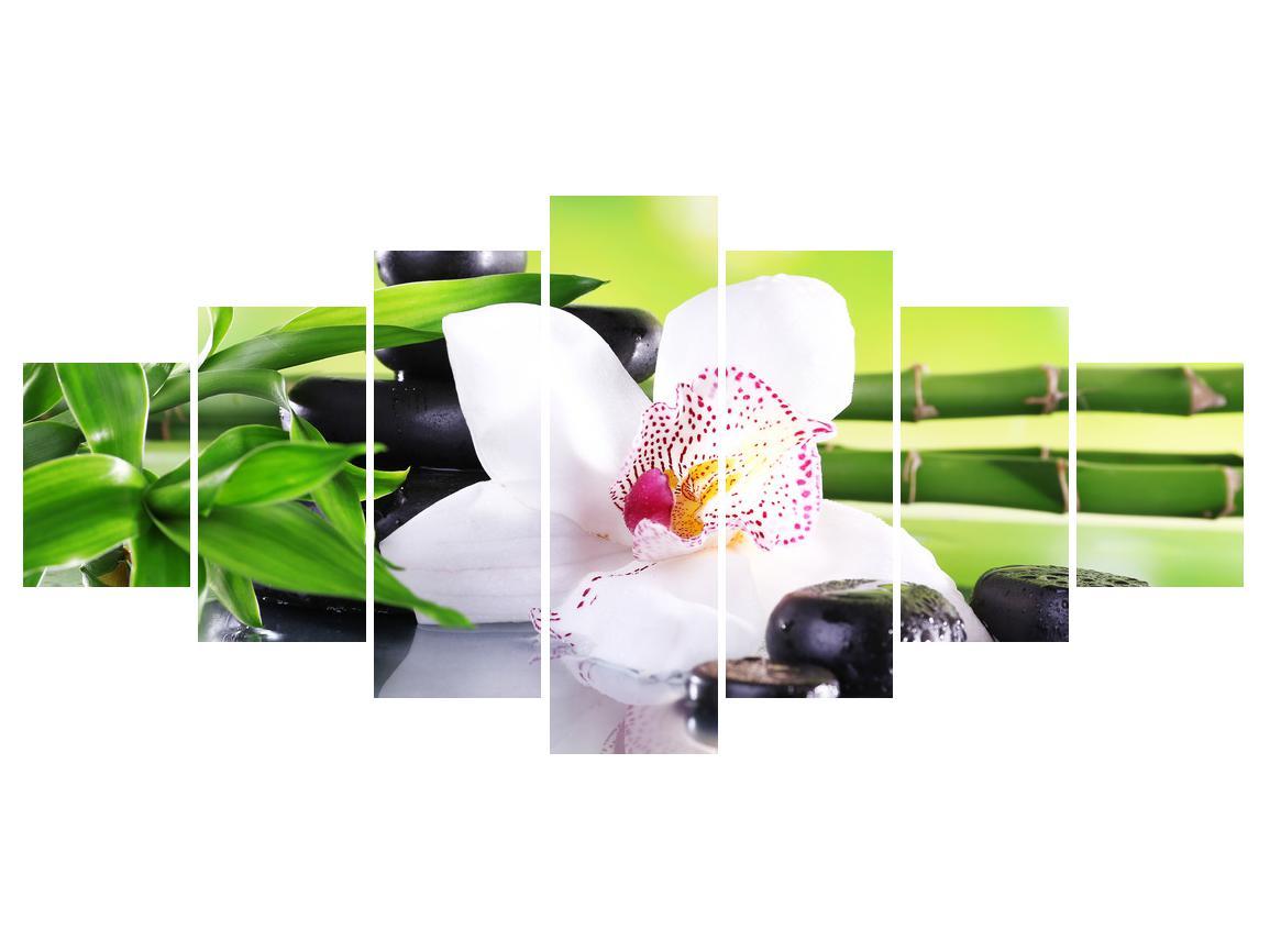Slika orhideje (K011995K210100)