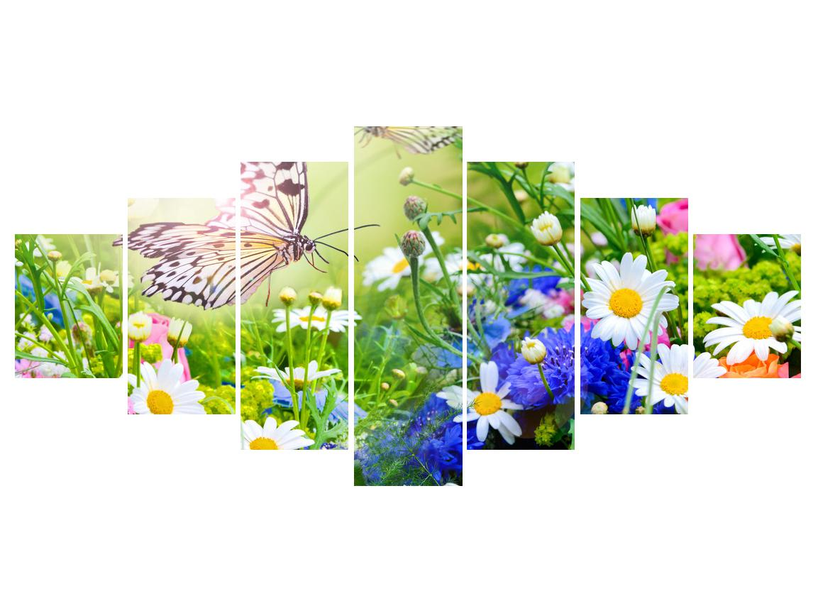 Slika poletnih cvetov z metuljem (K012220K210100)