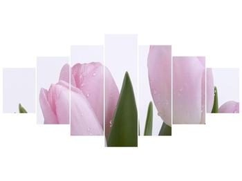 Obraz růžových tulipánů (F000389F210100)