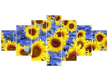 Obraz slunečnic (F000619F210100)