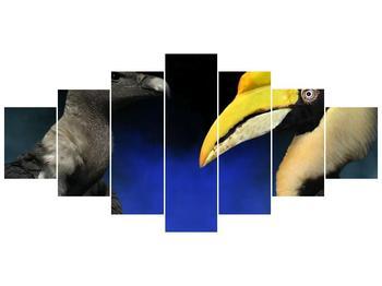 Obraz ptačích zobáku (F001358F210100)