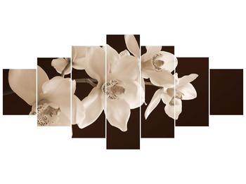Krásný obraz bílých květin (F001888F210100)
