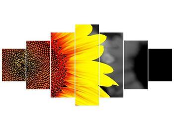 Obraz květu slunečnice (F002400F210100)