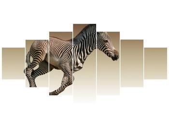 Obraz běžící zebry (F002416F210100)