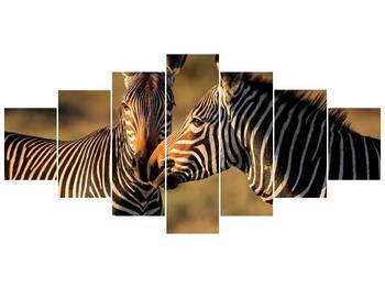 Obraz dvou zeber  (F002641F210100)