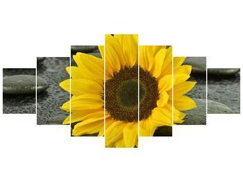 Moderní obraz F005794F210100 (F005794F210100)