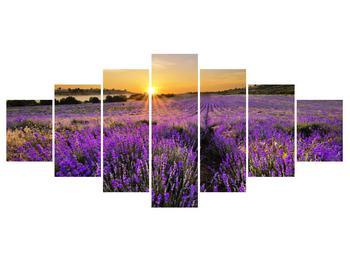 Tablou cu câmp de levandă (K011154K210100)
