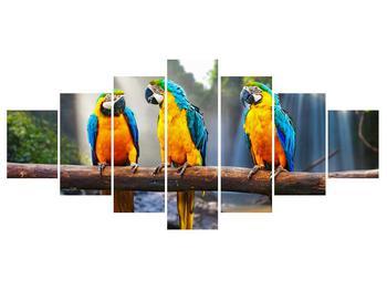 Obraz papoušků (K011994K210100)
