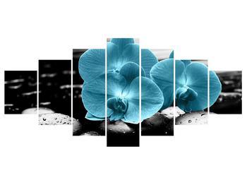 Tablou cu flori de orhidee albastre (K012398K210100)