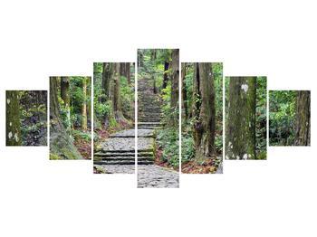 Obraz kamenných schodů v lese (K014268K210100)
