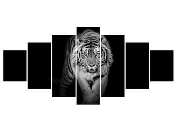 Obraz tygra (K014968K210100)