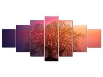 Obraz stromov v hmle (V020088V210100)