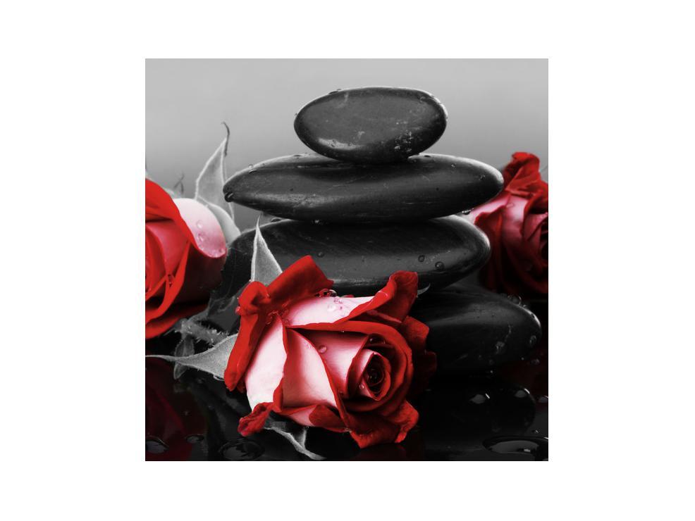 Obraz růže (K011705K3030)