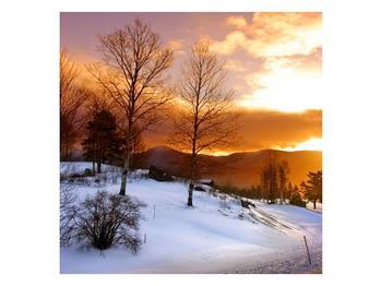 Obraz zimní krajiny (F000031F3030)