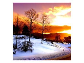 Obraz zimní krajiny (F000192F3030)