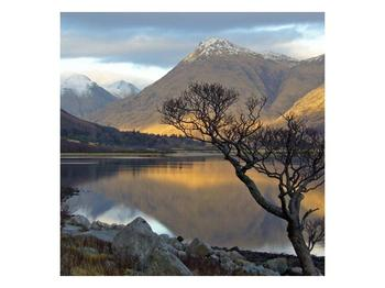 Obraz hor u jezera (F000686F3030)