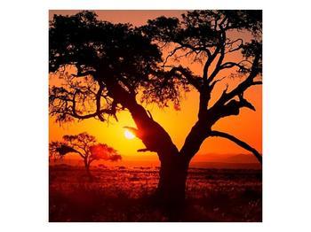 Obraz ohnivého západu slunce (F001288F3030)