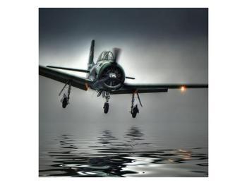 Obraz letadla  (F001593F3030)