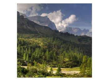 Krásný obraz hor (F001632F3030)