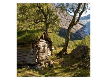Obraz horské chatrče (F001636F3030)