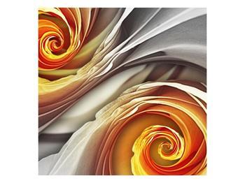 Abstraktní obraz - spirál (F001693F3030)
