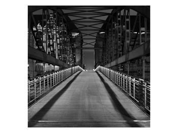 Černobílý obraz mostu (F001742F3030)