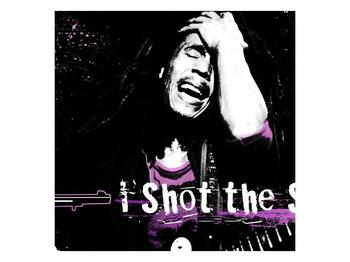 Obraz Bob Marley (F002162F3030)