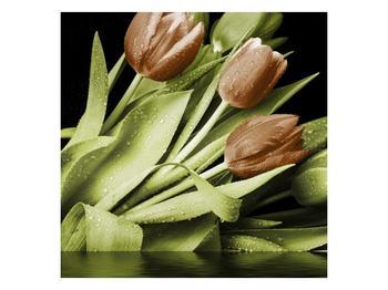 Obraz hnědých květů a zelených listů  (F002608F3030)