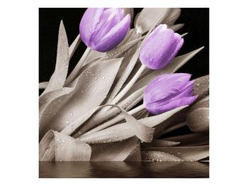 Obraz fialových květů  (F002679F3030)