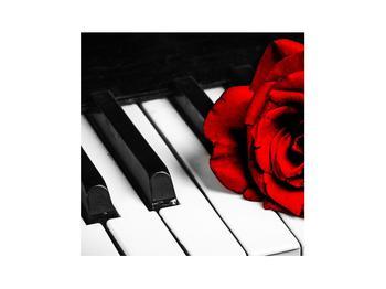 Zongora és egy rózsa képe (K011229K3030)