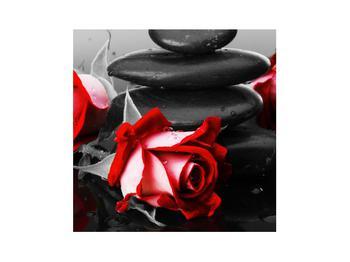 Obraz růže (K011400K3030)