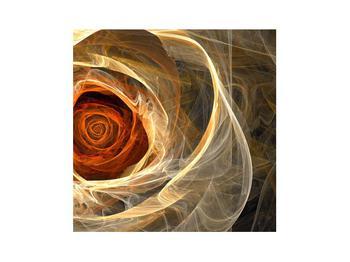 Moderní obraz růže (K011479K3030)