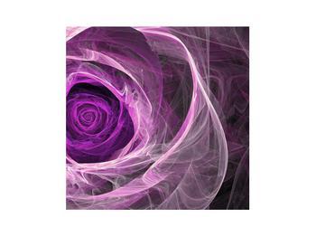 Moderný obraz fialovej ruže (K011482K3030)