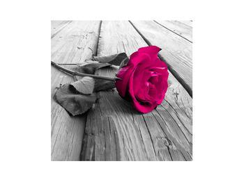 Obraz ruže (K011856K3030)