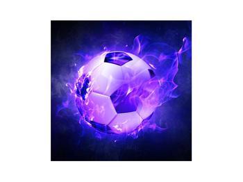 Tablou cu mingea de footbal în plasă (K014164K3030)