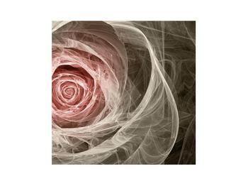 Abstraktní obraz růže (K014988K3030)