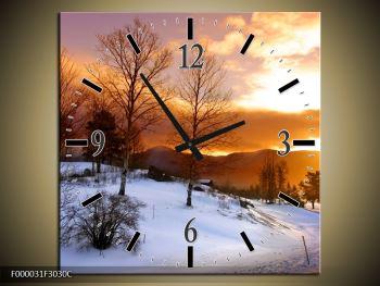 Obraz zimní krajiny (F000031F3030C)