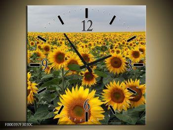 Obraz slunečnicového pole (F000397F3030C)