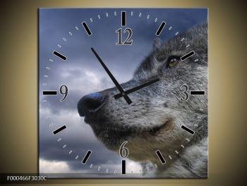 Obraz s hodinami F000466F3030C (F000466F3030C)